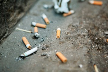 Discarded cigarette butts littering gully at back of building